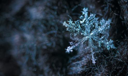 close-up-photography-of-snowflake-813872